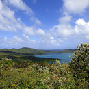 Point de vue depuis la route de Morne Pavillon - Photo : Edgar