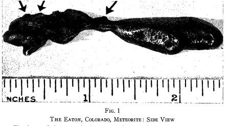 Eaton-Colorado-meteorite