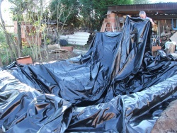 Mon bassin de jardin