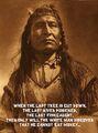 Native Amérindiens