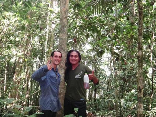 La jungle en mode sport !!!