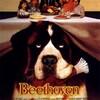 Beethoven 1  (1991).jpg