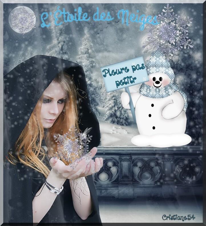 Défi pour Anastasia (on s'amuse ) + étoile des neiges pour Monia 59
