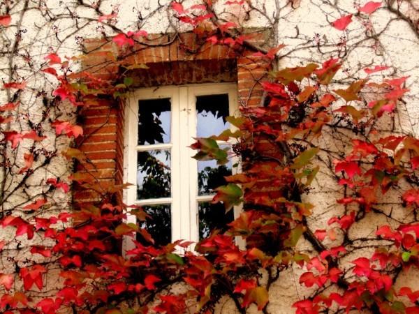 Lb05 - La fenêtre