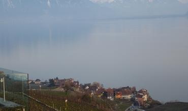 Vers Montreux - Dents du Midi - Vignoble des Lavaux - Saint-Saphorin