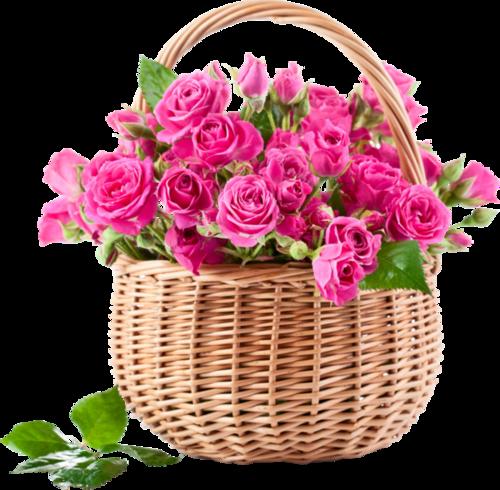 Roses en panier