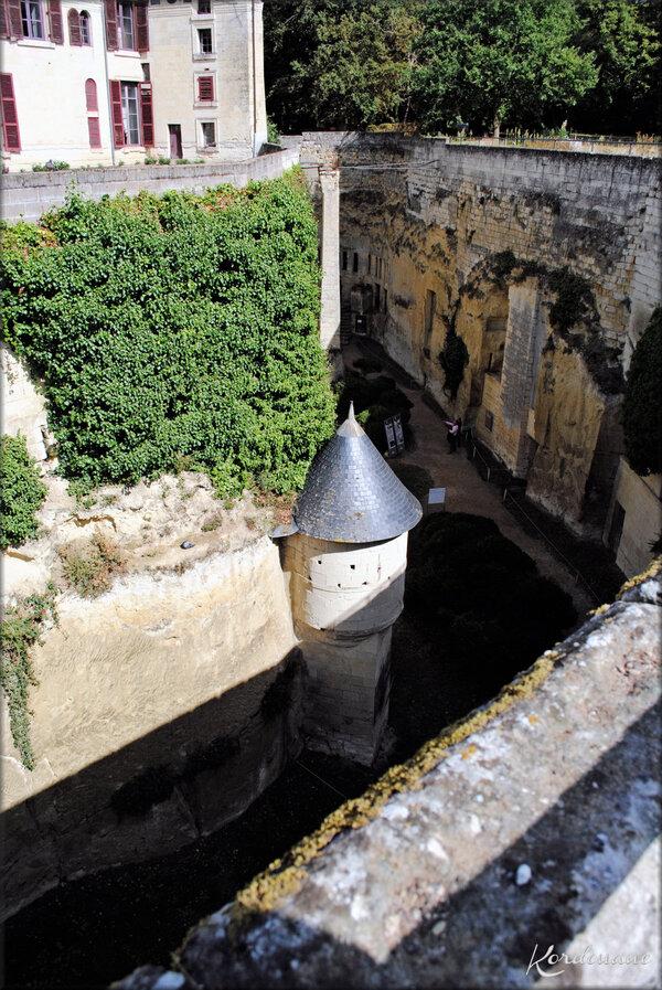 Photos des douves du Château de Brézé