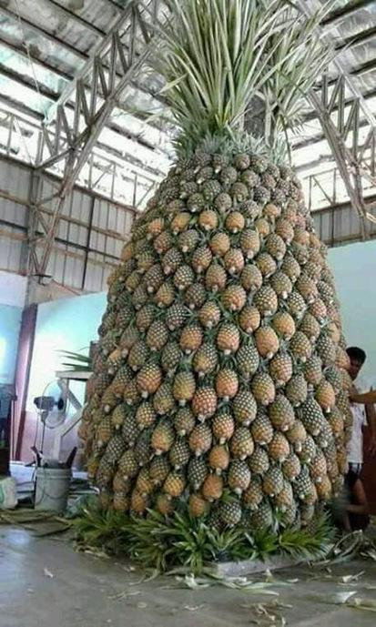 Baba aux épices et ananas rôti