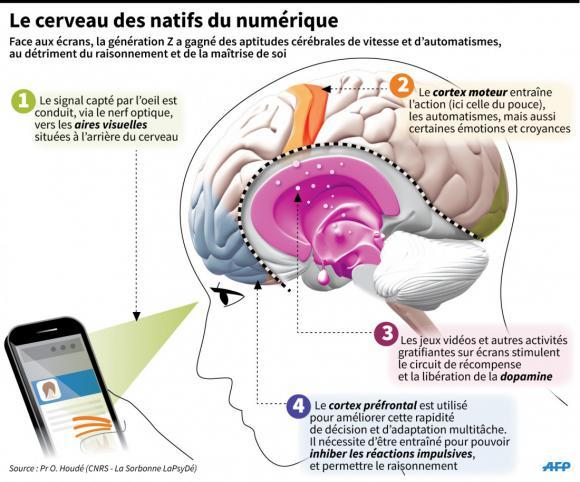 Les méfaits des écrans sur nos cerveaux