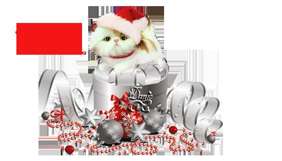 Joyeux Noël Maïté...amitié Bisous..