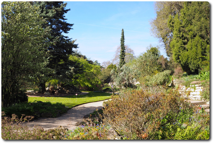 Printemps 2017 Jardin Alpin.
