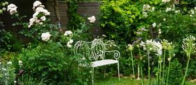 Le jardin de Gisèle, 5 ans après