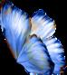 Chapillon du mois de Mai