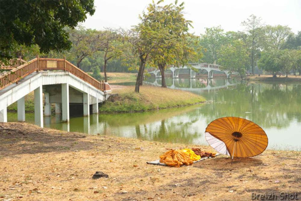>Moine solitaire, parc historique d'Ayutthaya