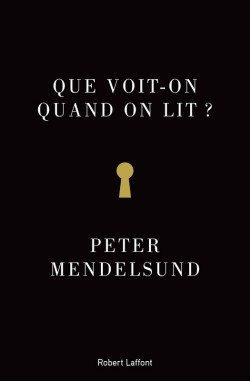 Couverture de Que voit-on quand on lit ?