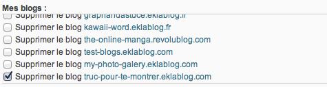 Comment supprimer un blog ?