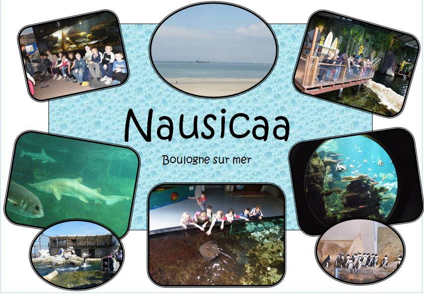 * Sortie scolaire à nausicaa (Boulogne sur mer- 62)
