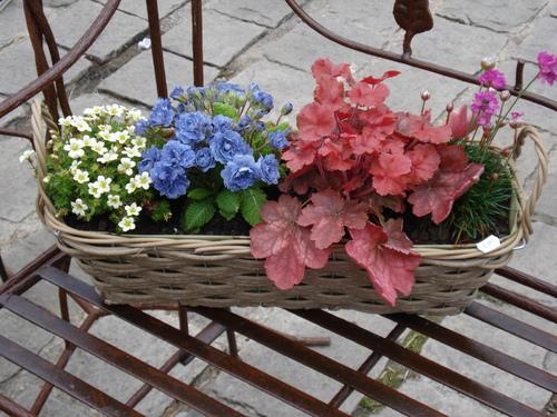 l'Esprit jardin à Versailles