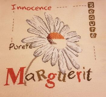 LLP marguerite