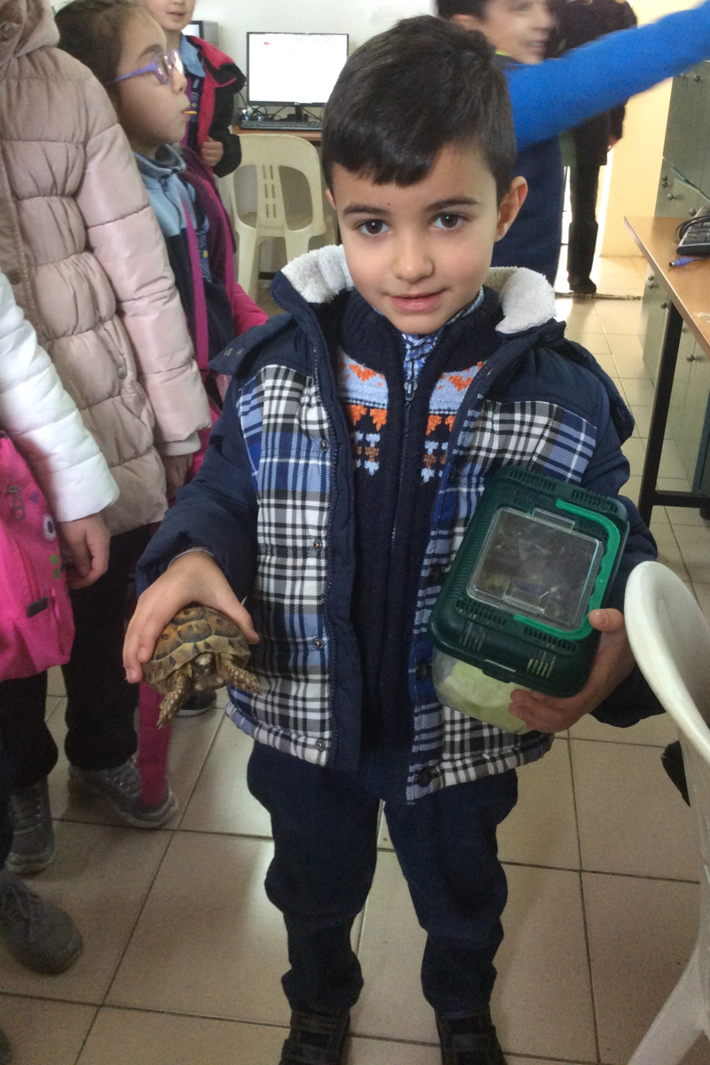 Elias s'occupe d'une tortue.