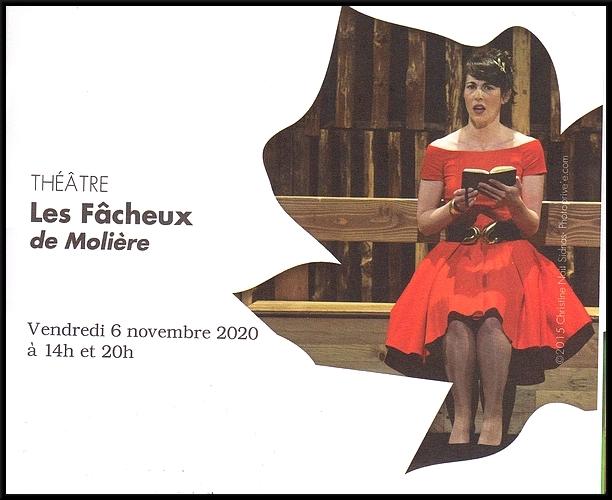 La nouvelle très belle saison théâtrale 2020-2021 du Théâtre Gaston Bernard a été présentée au public Châtillonnais