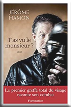 T'as vu le monsieur ? de Jérôme Hamon