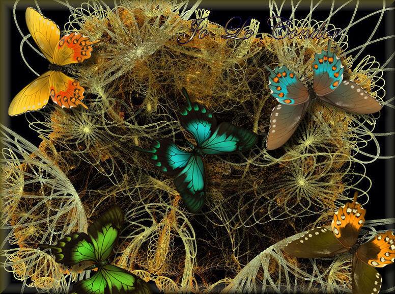 Paroles de fractales.......