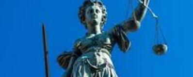 """Résultat de recherche d'images pour """"droit constitutionnel"""""""""""