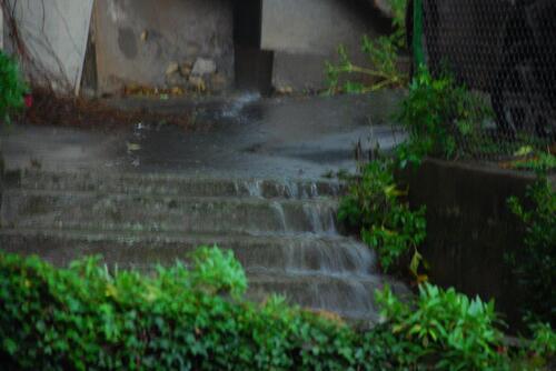 La pluie qui a fait tant de ravages dans le sud