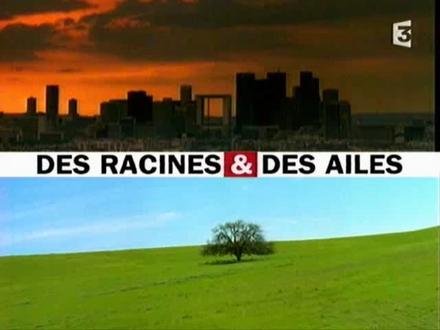 Des Racines et des Ailes à Carcassonne
