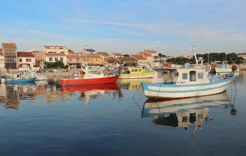 Un petit clin d'œil du port Carro