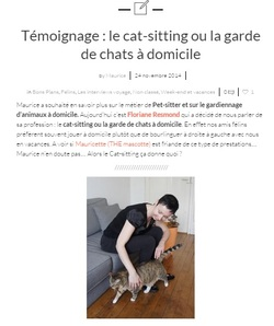 Article sur le cat-sitting à Nantes