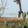 Bénin Agoué  bord de l\'océan