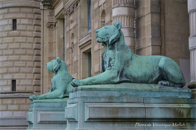 Musée du Louvre : La Porte des Lions : Lionnes du Sahara