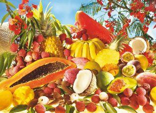 Bienvenue sur l'Île Intense de Fany à la Réunion