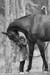 petite-file-robe-d-ete-leggins-cheval-bois-tendresse-caresse-noir-et-blanc: