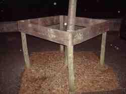 Chabrillan - protection des arbres - en quinconce par rapport à la fosse, paillage au sol