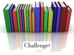 Bilan des challenges 2013