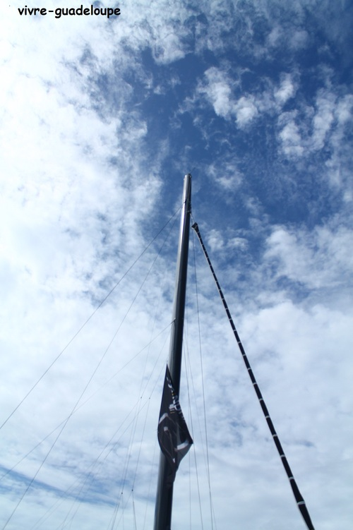 LA route du Rhum ...à la marina