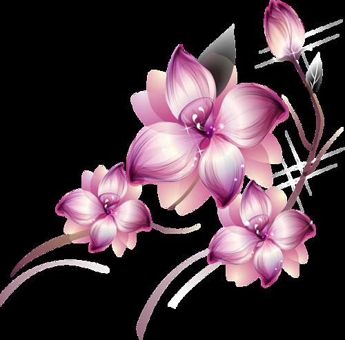 Ornements Floraux Série 25