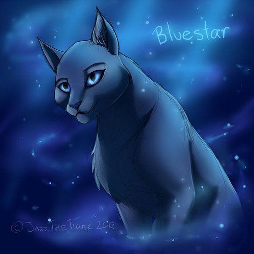 lgdc - étoile bleue | La guerre des clans, Lgdc, Animaux mignons