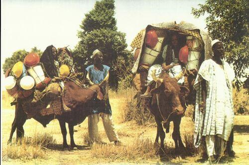 L'Afrique...