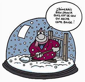 chat-dans-la-neige.jpg