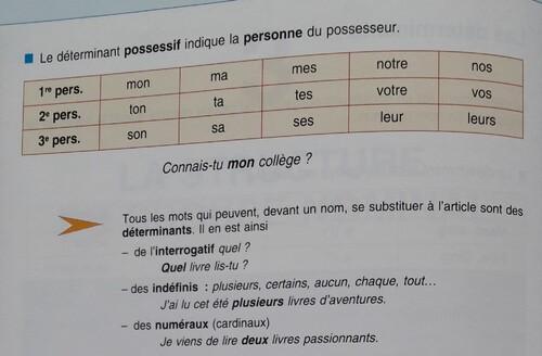B / Les adjectifs ou pronoms possessifs