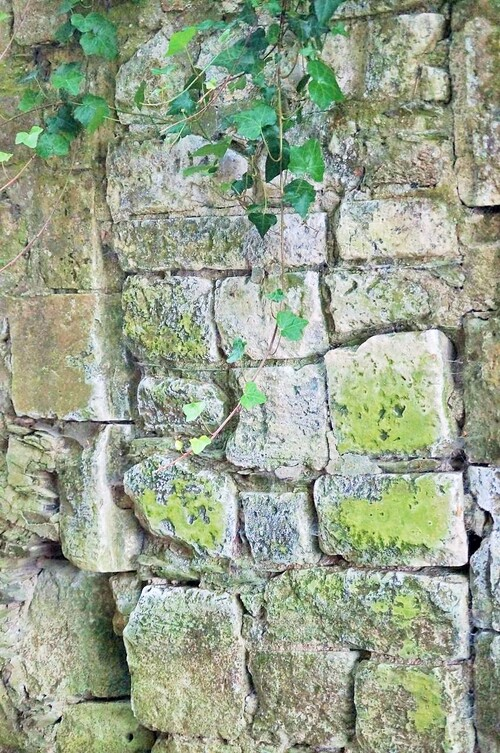 Variations sur un mur