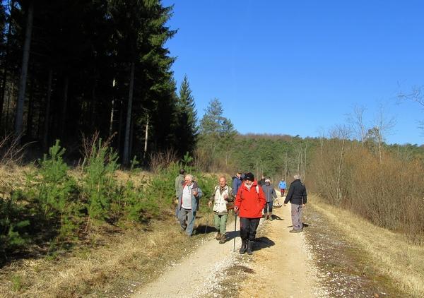 Une journée avec la Société Mycologique du Châtillonnais