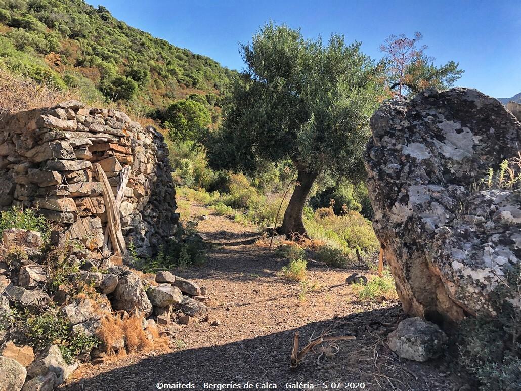 Anciennes bergeries de Calca - Galéria