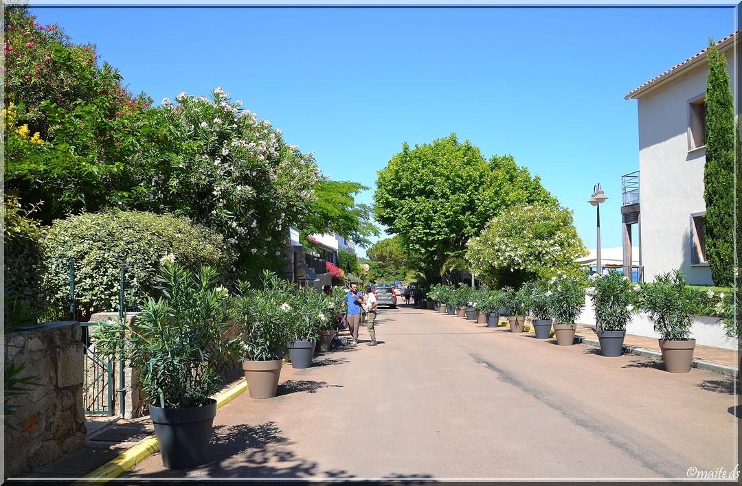 Pinarello village