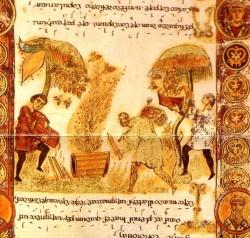 L'histoire du mouchier