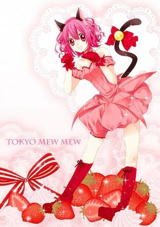 Tokyo Mew mew (= mew mew power)